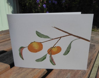 Persimmon Blank Note Cards 5 pack