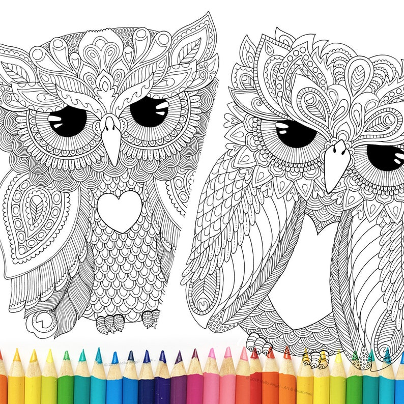 Owl Colouring 2 Pack Adult Coloring Colouring In Owl Etsy