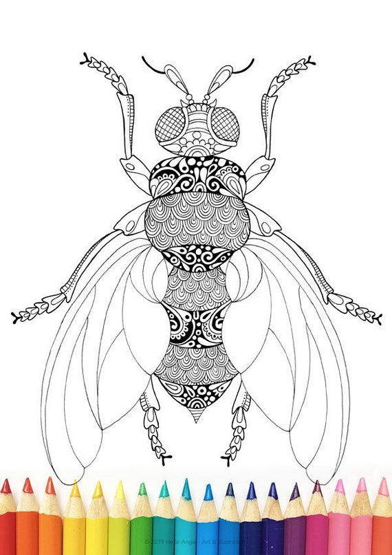 - Honey Bee Colouring Adult Coloring Colouring In Coloring Etsy