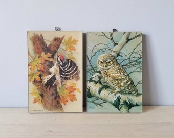 Vintage Basil Ede pair of bird prints on board | Mullionaire prints made in England | owl and woodpecker |