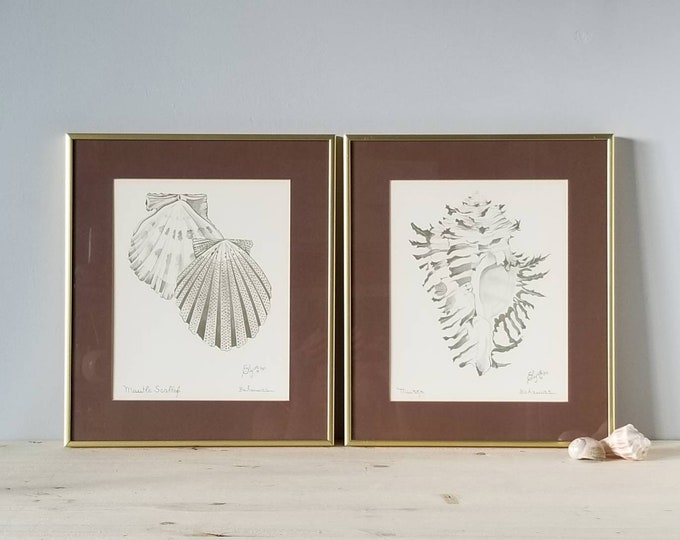 Featured listing image: Vintage Seashell framed prints by Elyse Wasile | shell art prints |