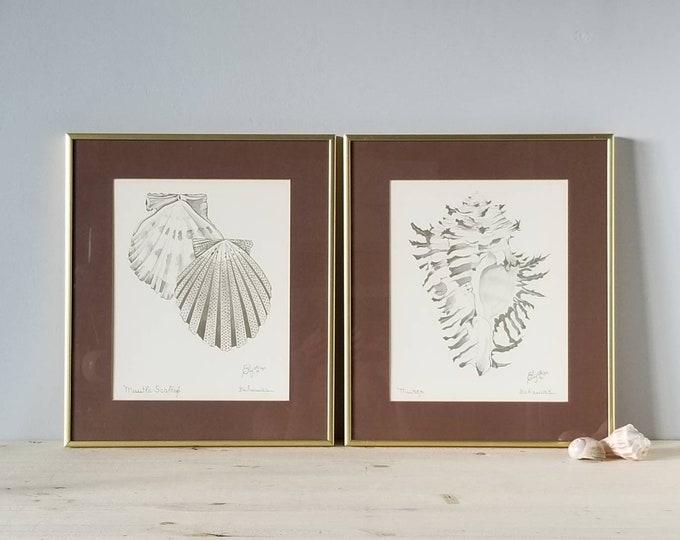 Vintage Seashell framed prints by Elyse Wasile | shell art prints |