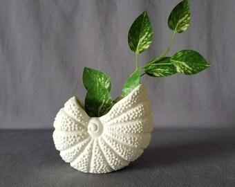 Vintage shell planter | shell plant pot | beach decor |