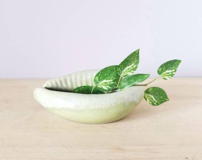 Vintage ceramic shell planter | plant pot | puka shell |