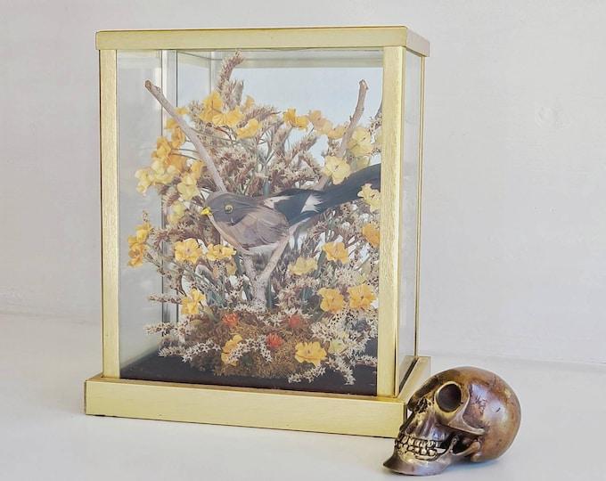 Vintage dried flower terrarium curio | faux bird taxidermy | glass and brass curio with bird |