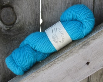 Booby Blue - MCN Blissful DK - Hand Dyed Yarn