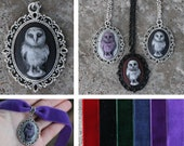 Cameo - Owl - Pendant, necklace or choker - Black, Purple, Red, Green, Blue
