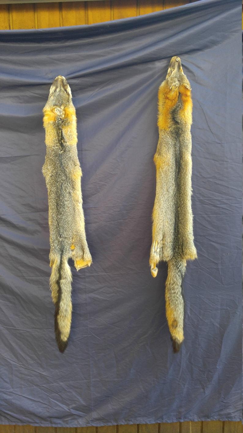 20042e38755e8 real animal tanned gray fox skin pelt hide fur rug taxidermy leather