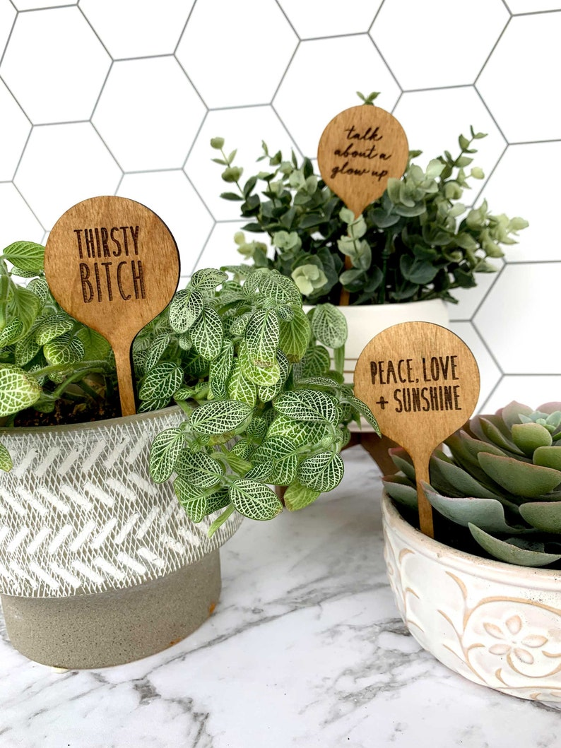 Set of Plant Labels  Wooden Garden Marker  Cheeky Gift  image 0