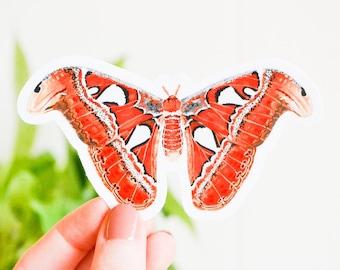 "Atlas Moth Sticker, Die Cut 3"" x 1.67"", Handmade Vinyl Sticker from Acrylic Painting, Moths Sticker Collection Set, Attacus atlas"