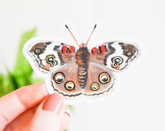 "Buckeye Butterfly Sticker, Die Cut 2"" x 3"", Handmade Vinyl Sticker from Acrylic Painting, Common Buckeye"