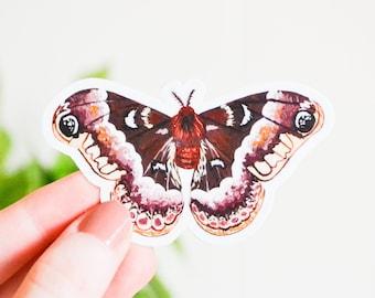 "Promethea Silkmoth Sticker, Die Cut 3"" x 1.75"", Handmade Vinyl Sticker from Acrylic Painting, Moths Sticker Set, Callosamia promethea"