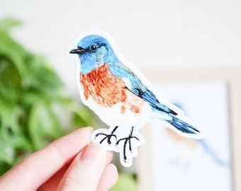 "Bluebird Sticker, Die Cut 3"" x 3"", Handmade Vinyl Sticker from Acrylic Painting, Bird Species Stickers"