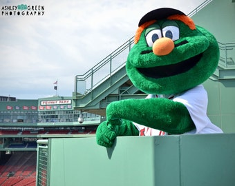 Wally Green Monster Etsy