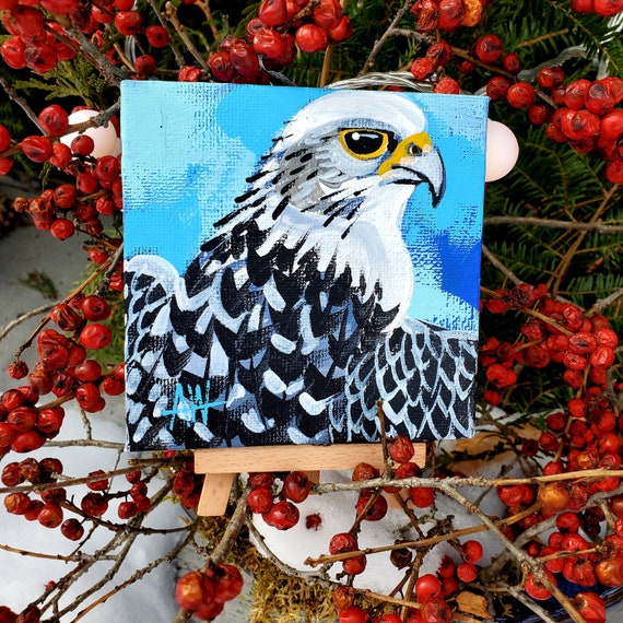 Gyrefalcon, largest falcon on earth and mascot of the US Airforce Academy. A one-of-a-kind painting of this magnificent bird by Ashley Wolff