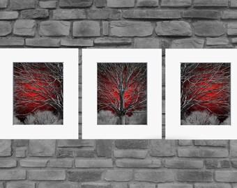 Butterfly Tree Wall Art Picture Black Grey Heart Love Canvas Print Split