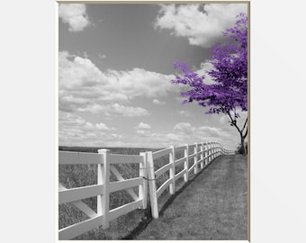 Black White Purple Wall Art, Modern Purple Tree Landscape, Purple Home Decor  Wall Art Matted Picture