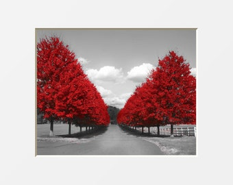 a56ea832602 Black White Red Wall Art