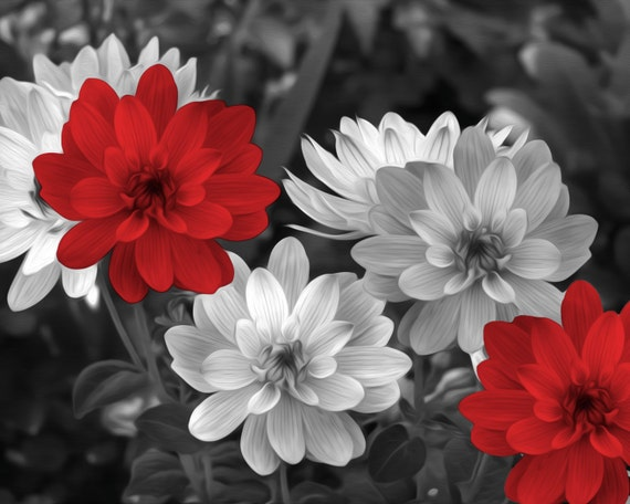 Black White Red Flowers Decor Red Bathroom Bedroom Picture Etsy