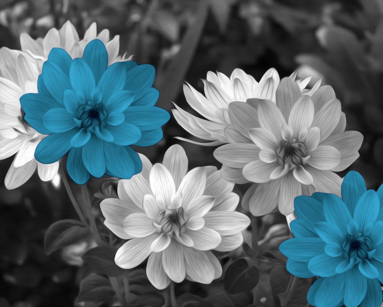 Black White Blue Flowers Blue Floral Decor Blue Posp Of Etsy