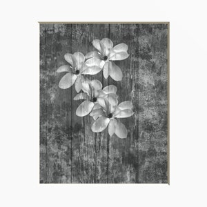 Black white wall art etsy rustic black white wall art modern rustic floral bathroom bedroom wall art matted picture mightylinksfo