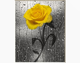 Yellow Gray Wall Art, Yellow Rose Flower, Bathroom Bedroom Yellow Home Decor Matted Picture