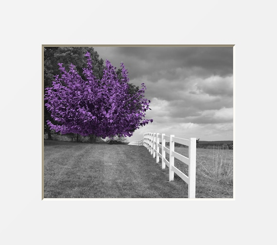 Black White Purple Tree Forest Wall Decor Purple Pop Of Etsy