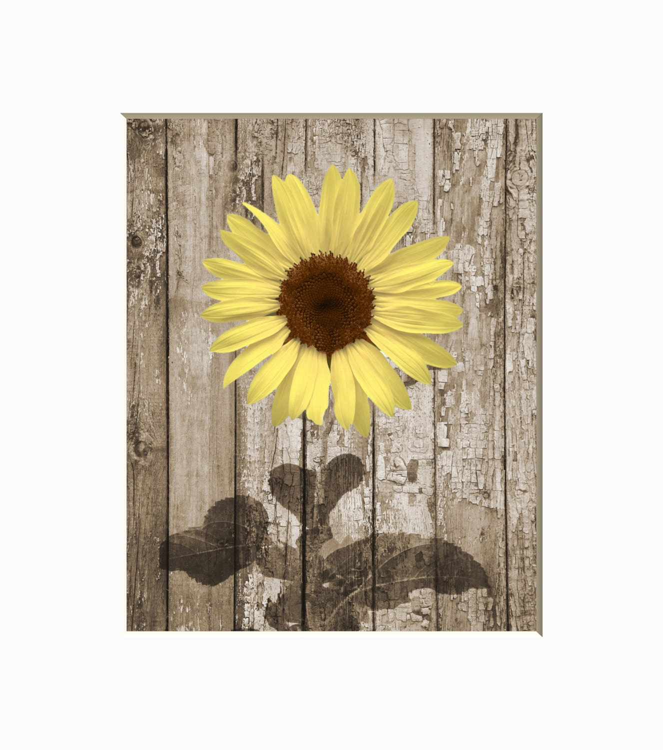 Rustic Modern Farmhouse Decor Sunflower Wall Picture Country Etsy
