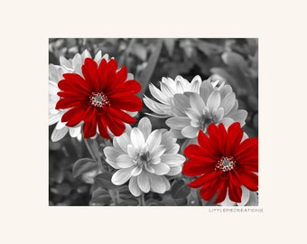 Black White Red Flowers Decor, Red Bathroom Bedroom Picture, Red Gray Modern Home Decor, Red Pop Of Color Wall Art