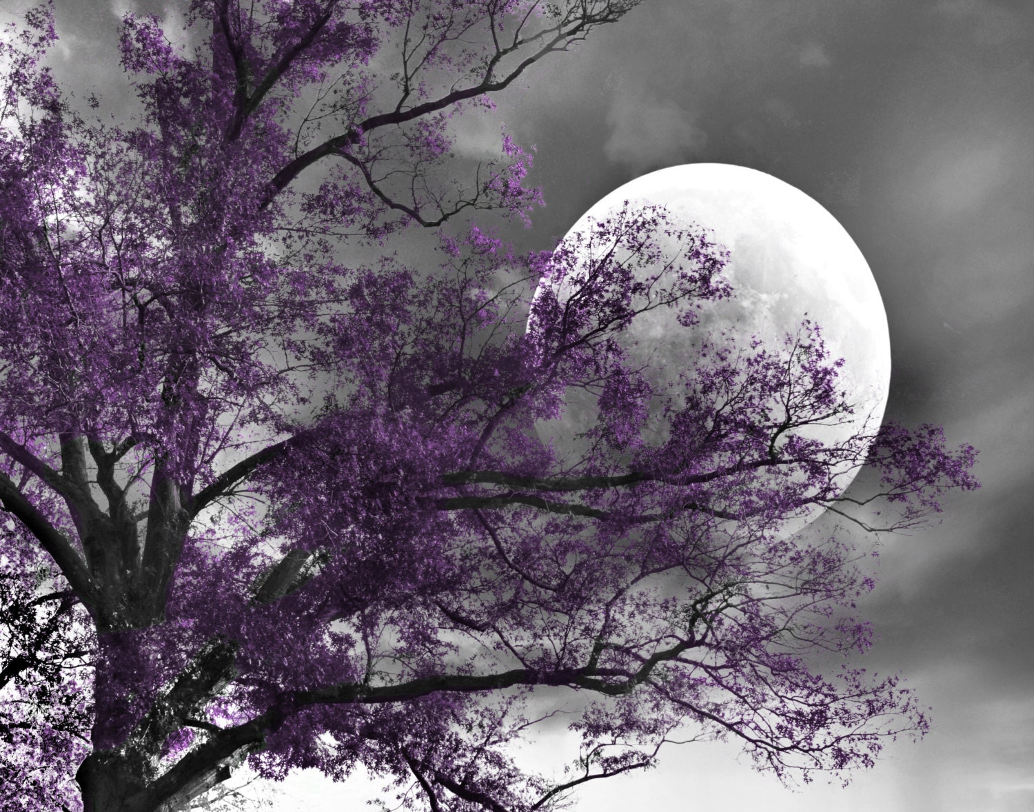 Black white purple print tree moon contemporay purple gray etsy