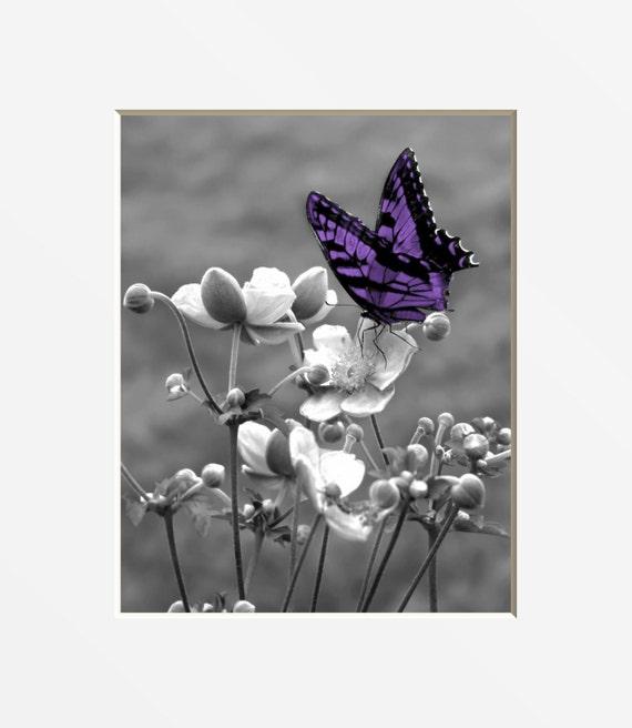 Black White Purple Decor, Purple Butterfly, Purple Modern Butterfly Floral  Home Decor Picture