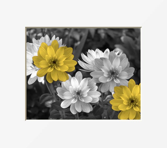 Black white yellow wall art yellow gray flowers modern home decor pop of yellow matted picture image 0 mightylinksfo