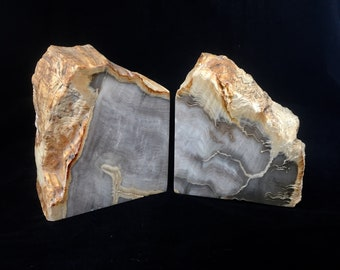 Stunning Petrified Wood Bookends - Greys Grays with Umber Accents