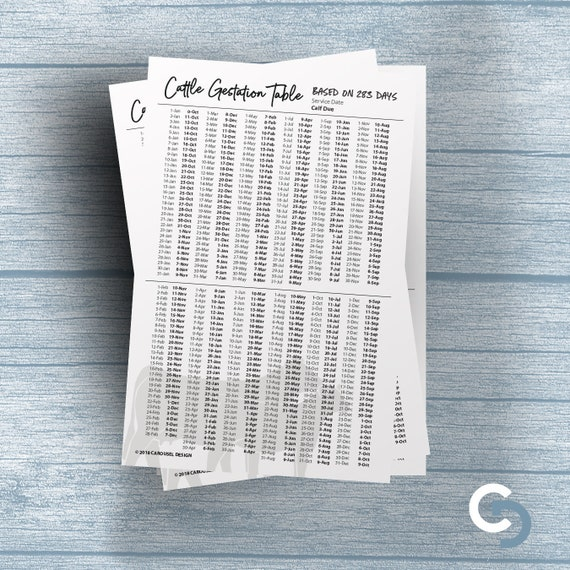 Printable Cattle Gestation Chart 2 Sizes
