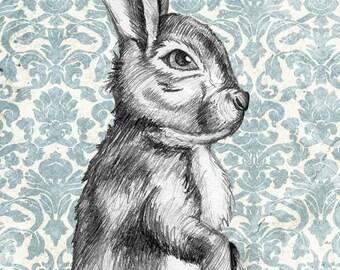 "8x10 Print ""Sassy Bun"" Bunny. Rabbit. Animals. Cute. Vintage look. Graphite. Pencil. Drawing."