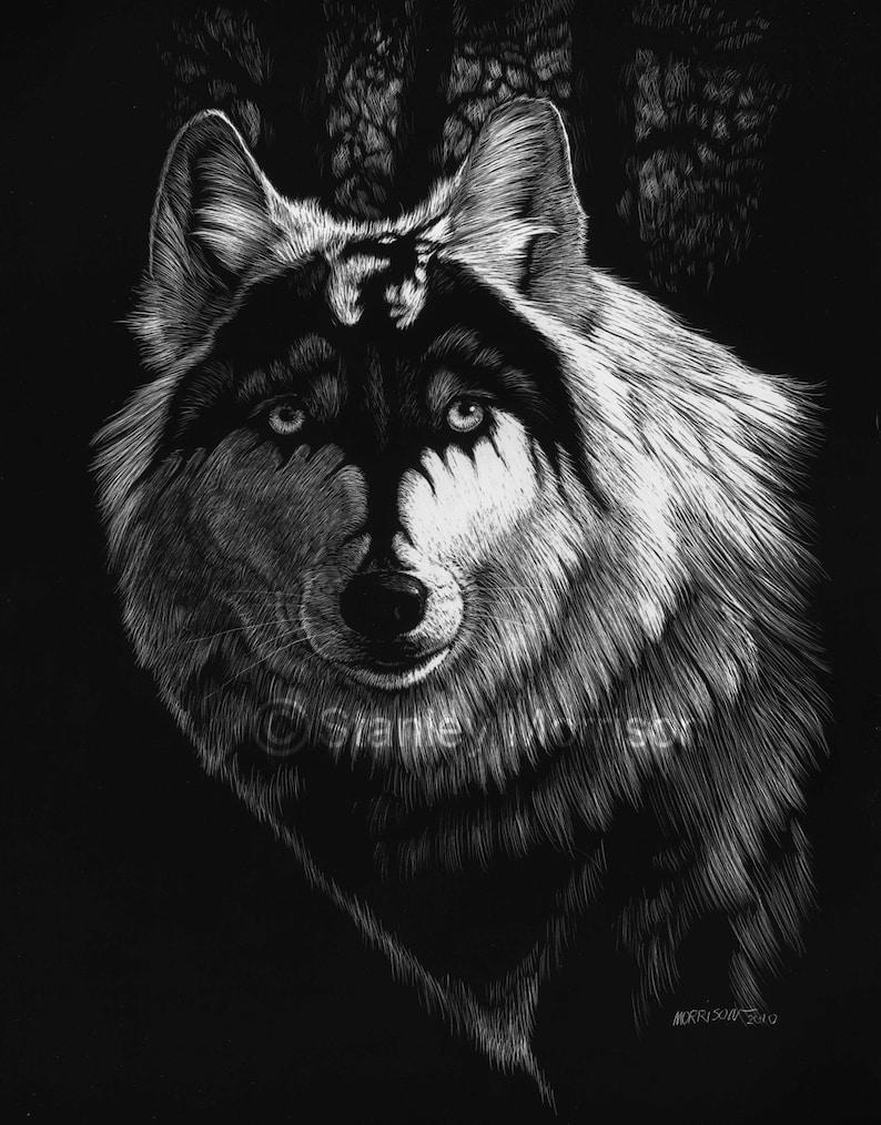 8.5x11 wolf art print scratchboard wolf dragon spirit or 11x14 DRAGON WOLF Print 4x6