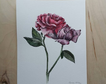 Rose watercolor and pen painting
