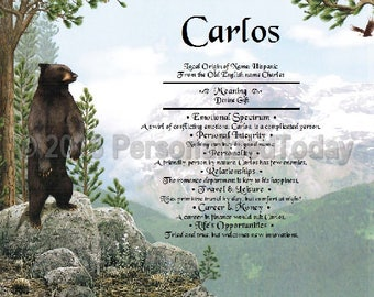 Bear Name Meaning Origin Print Name Personalized Certificate 8.5 x 11 Inches Customized With Any Name
