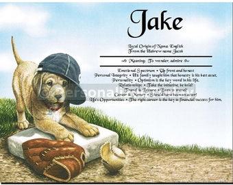 Baseball Puppy Name Meaning First Name Origin Print Custom Personalized Certificate 8.5 x 11 Custom Name Sports Wall Decor Boy Nursery Decor