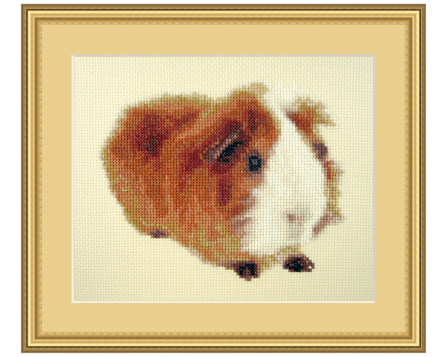 Guinea Pig Cross Stitch Patterns Www Topsimages Com