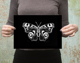 Peacock Butterfly Limited Edition Screen Print