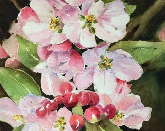 Spring flowers apple blossoms watercolor painting original   9 x 13