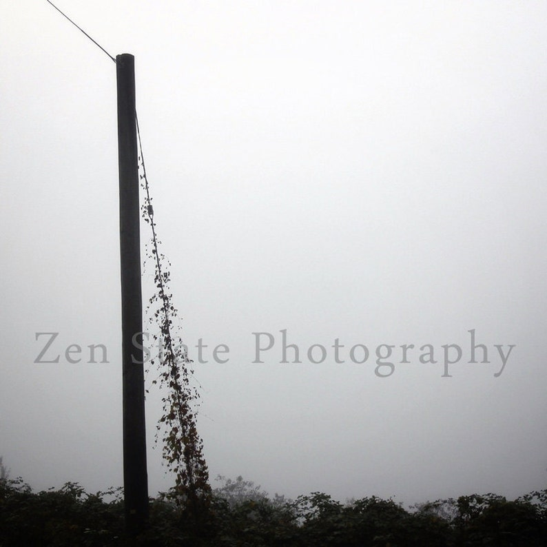Lost In the Fog Photography Print. Foggy Photo Print Gray Wall image 0