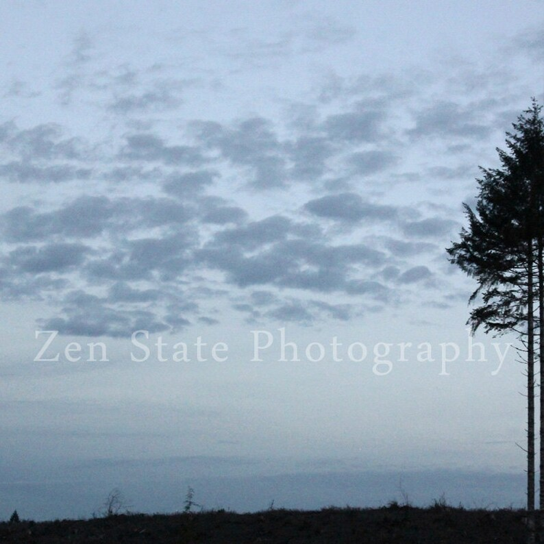 Dusk Clouds Photograph. Tree Photo Print. Nature Photography image 0