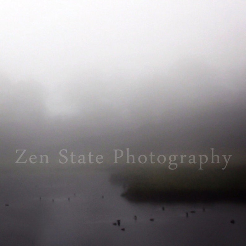 Fog Photography Print. Nature Print. Forest Photo Print. image 0