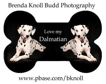 Dalmatian Dog Bone Ornament