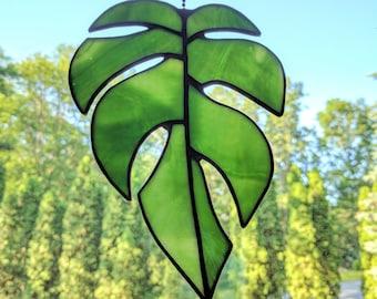 Stained Glass Rhaphidophora tetrasperma Leaf (#323)