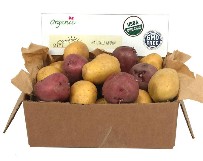 Red and Yellow Seed Potatoes Mix 5 Lbs. Certified Organic Potato Collection- Spring Shipping Non-GMO