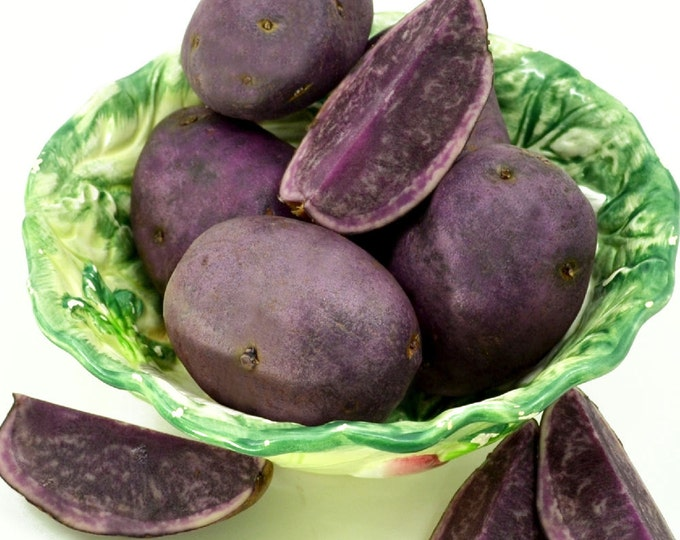 All Blue Seed Potatoes Certified Organic Virus Free 5 Lbs. Spring Shipping Blue Potatoes Non-GMO