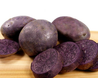 Purple Majesty Seed Potatoes Certified Organic and Virus Free 2.5 Lbs. -  Purple Potatoes Non-GMO SPRING SHIPPING